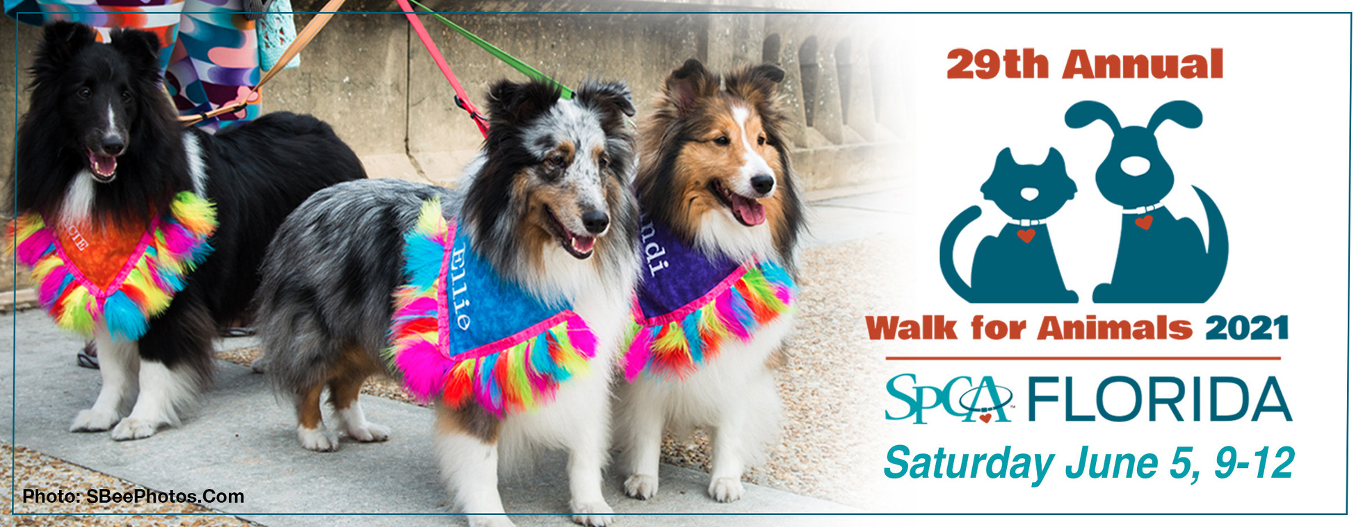 2021 Walk for Animals